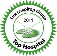 Leapfrog Group Logo
